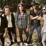 Pajas musicales: The Souljacket